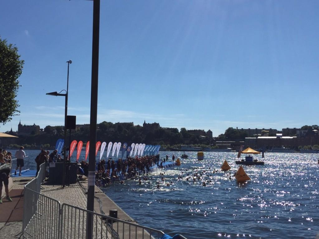 Så här såg det ut där simmarna startade i Riddarfjärden.